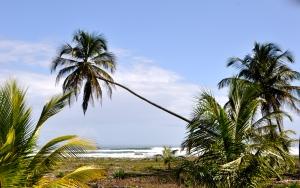 Coastal Caribbean Costa Rica